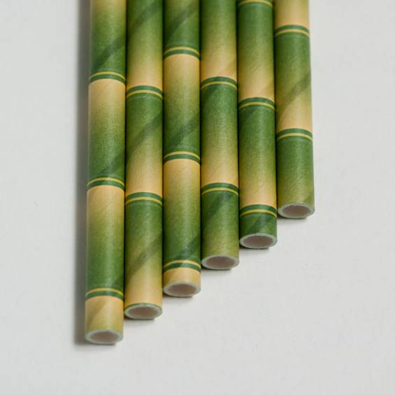 Eco Friendly Paper Straws 7.7 in. Bamboo - 100/Cs